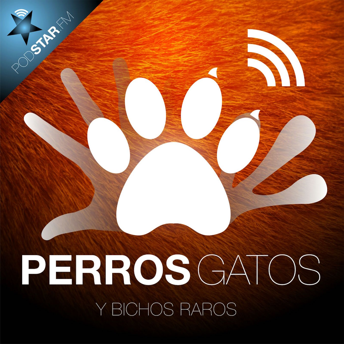Logo de Perros, Gatos y Bichos Raros